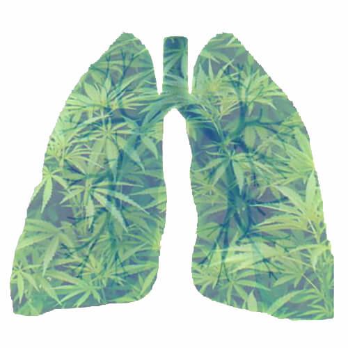Користь і шкода для легень