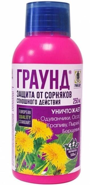 ТЕХНОЕКСПОРТ Граунд фото