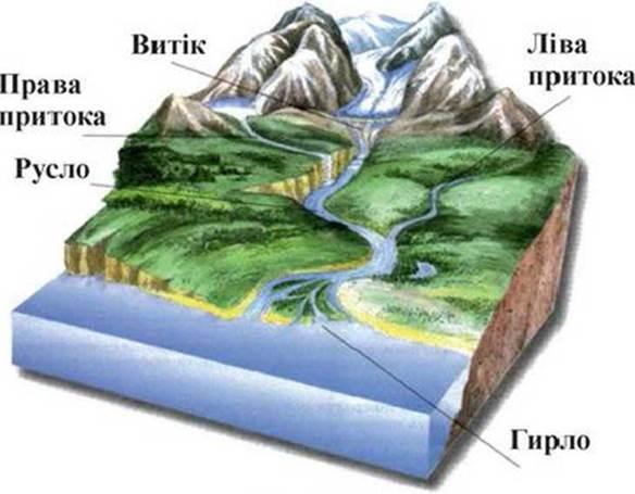 Будова річки