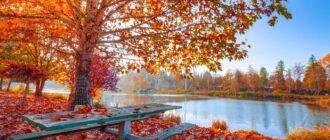 Речення про осінь, твір про осінь 5 клас 10 речень