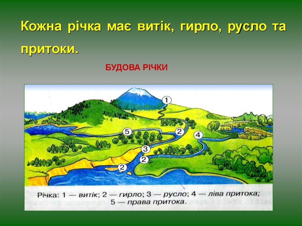 Будова річки: що таке річка, класифікація, короткий опис частин річки