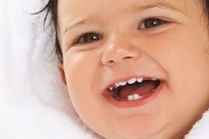 Молочні зуби будова